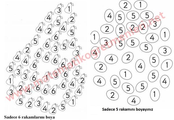 1. sınıf matematik 6 sayısı